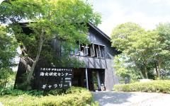海女研究センター