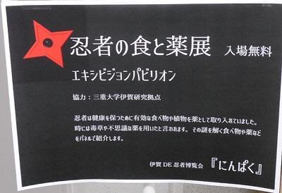 にんぱく8.jpg