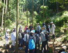 森林体験学習1-2.png